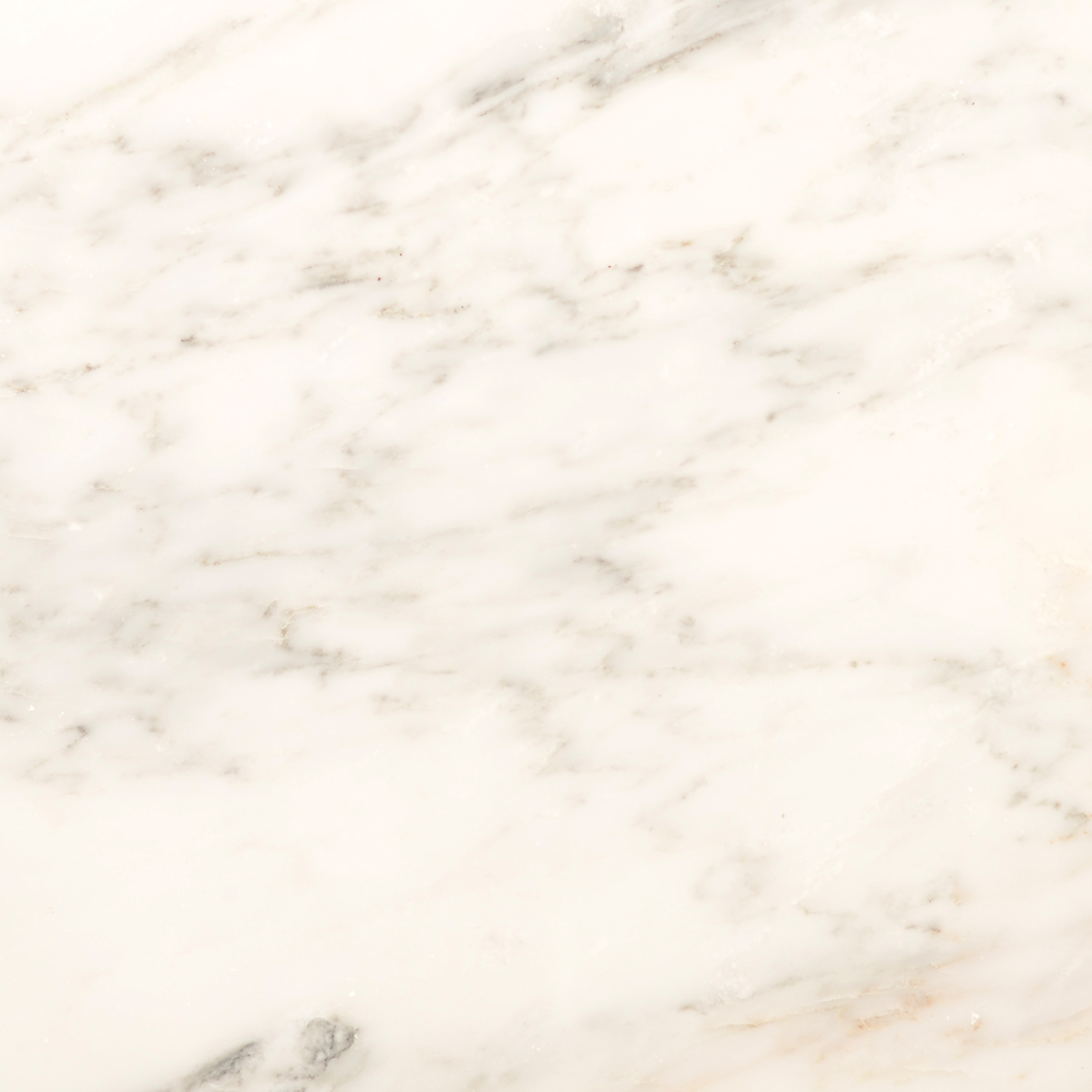 Arabescato honed marble collection otto tile for How to hone marble